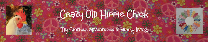 Crazy Old Hippie Chick