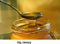 Image of Honey