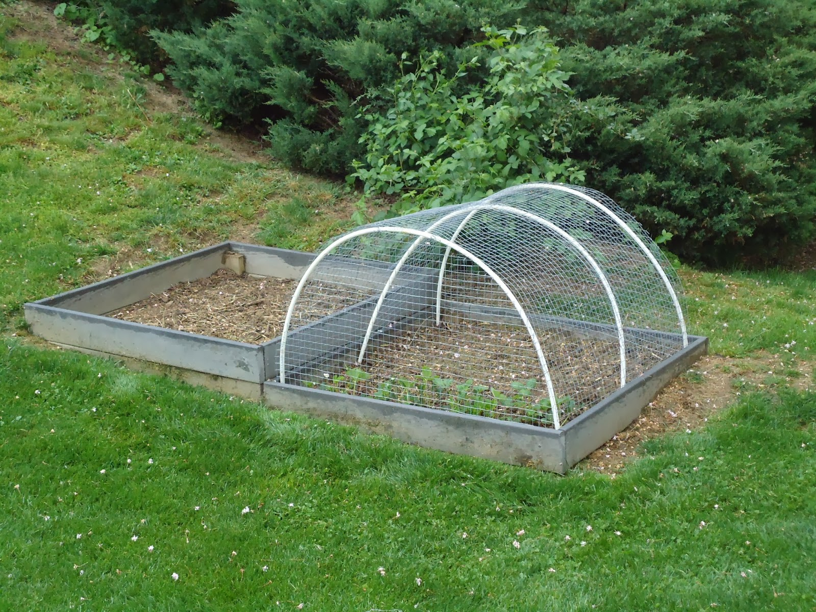 organic garden fencing
