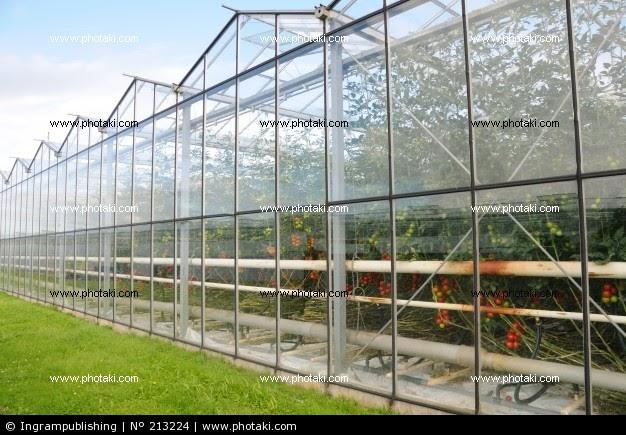 Invernaderos c mo funcionan los invernaderos - Como funcionan los emisores termicos ...