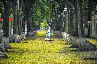 Cảm xúc nhớ thương mùa thu Hà nội