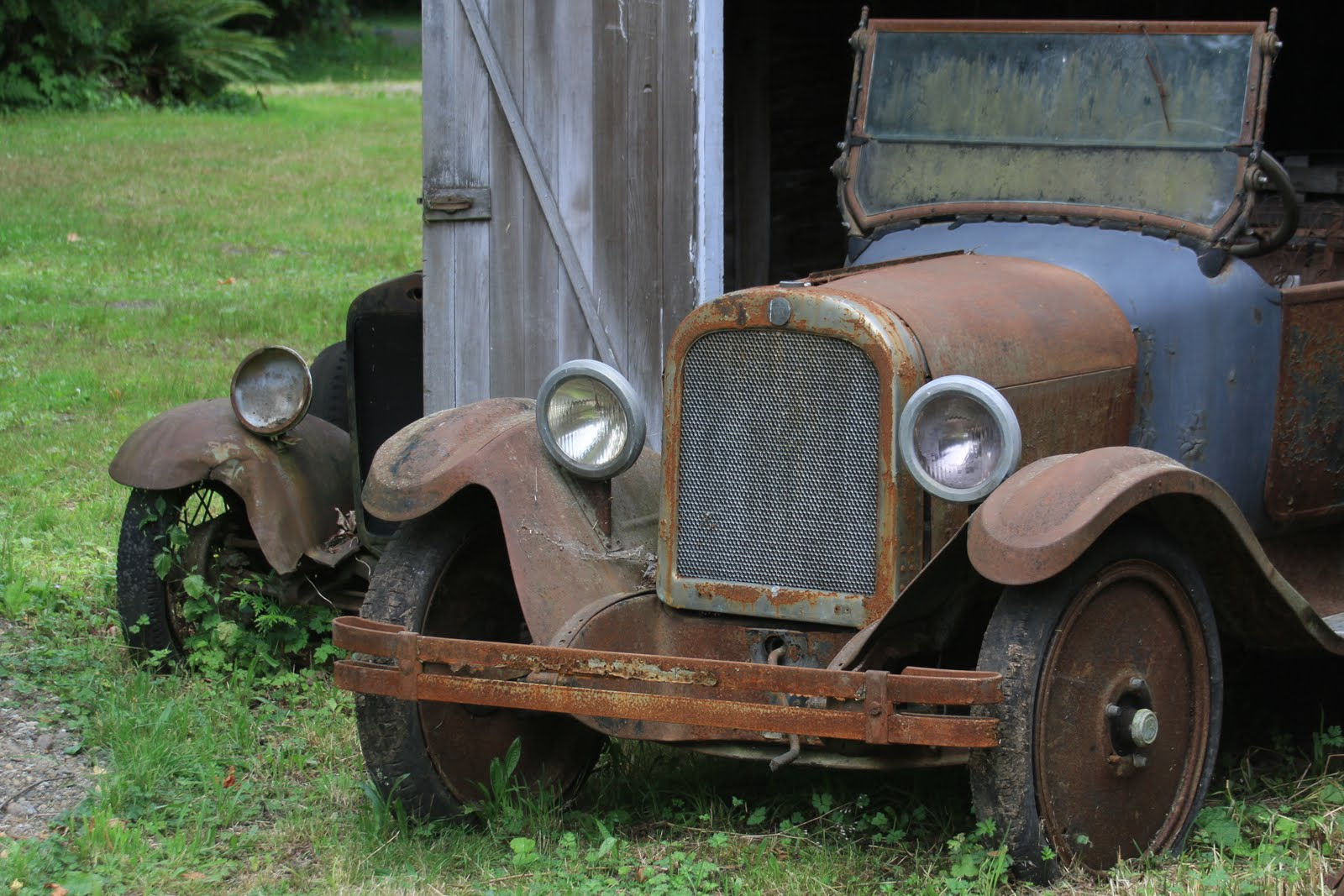 Serendipity and Orchids: More Derelict Vehicles