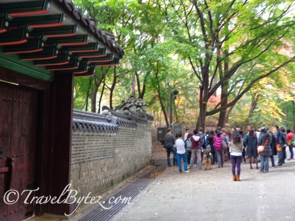Changdeokgung Palace (창덕궁) and Secret Garden Tour in Autumn!