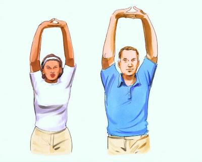 اطالات عضلات الاكتاف