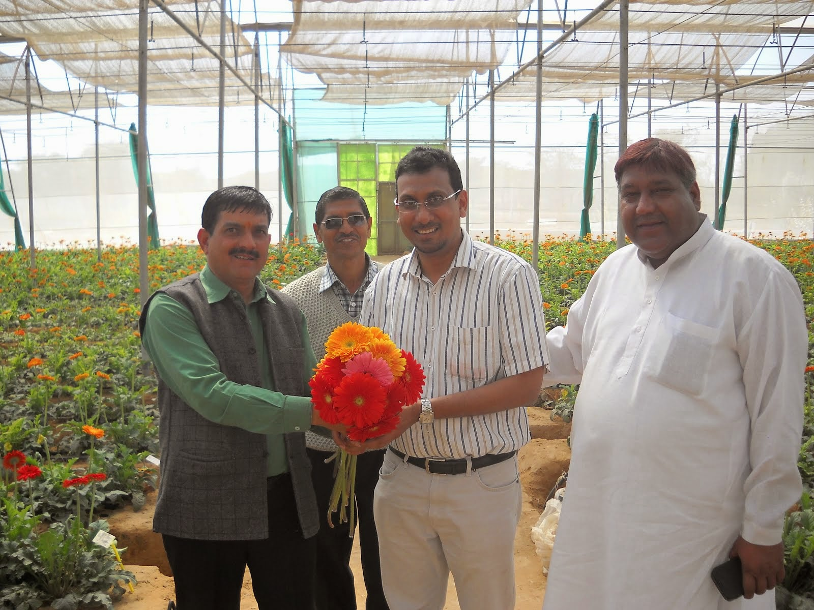 ACI AGRO SOLUTION GREEN HOUSE