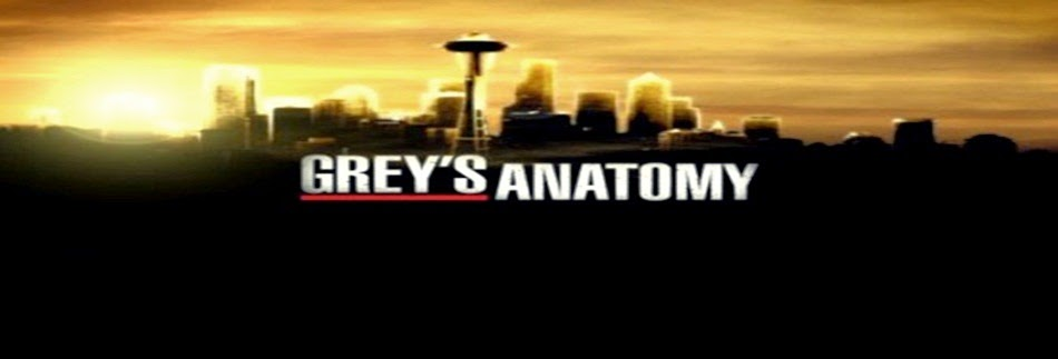 We Love Grey's Anatomy