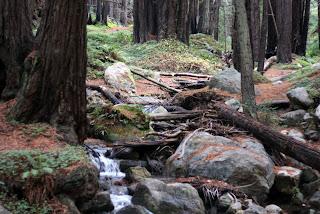 limekiln creek state park