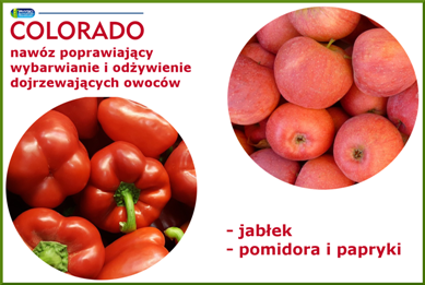 COLORADO do jabłek, pomidora i papryki