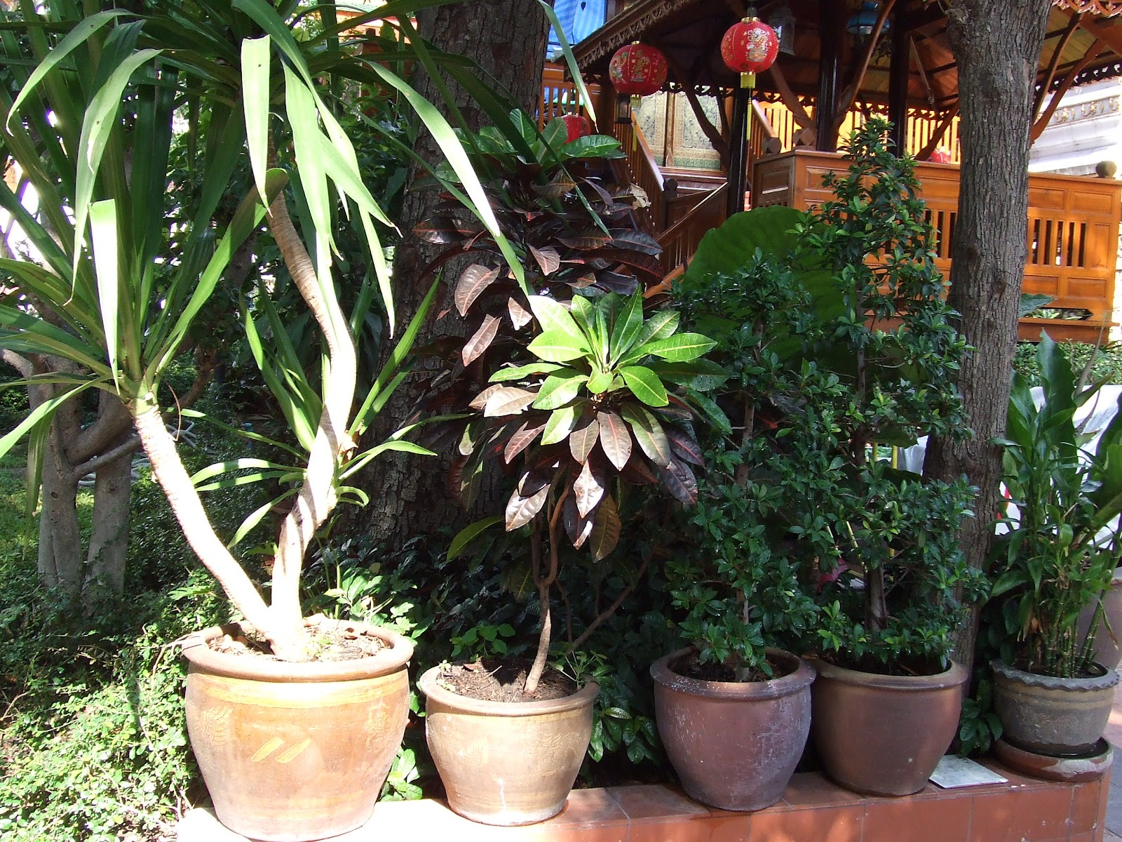 Khun vRo: Nain de jardin made in Thailand!