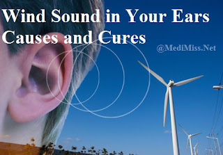 Remedis for Wind Sound in Your Ears
