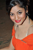 Shilpi Sharma Photos at Green Signal Audio-thumbnail-9