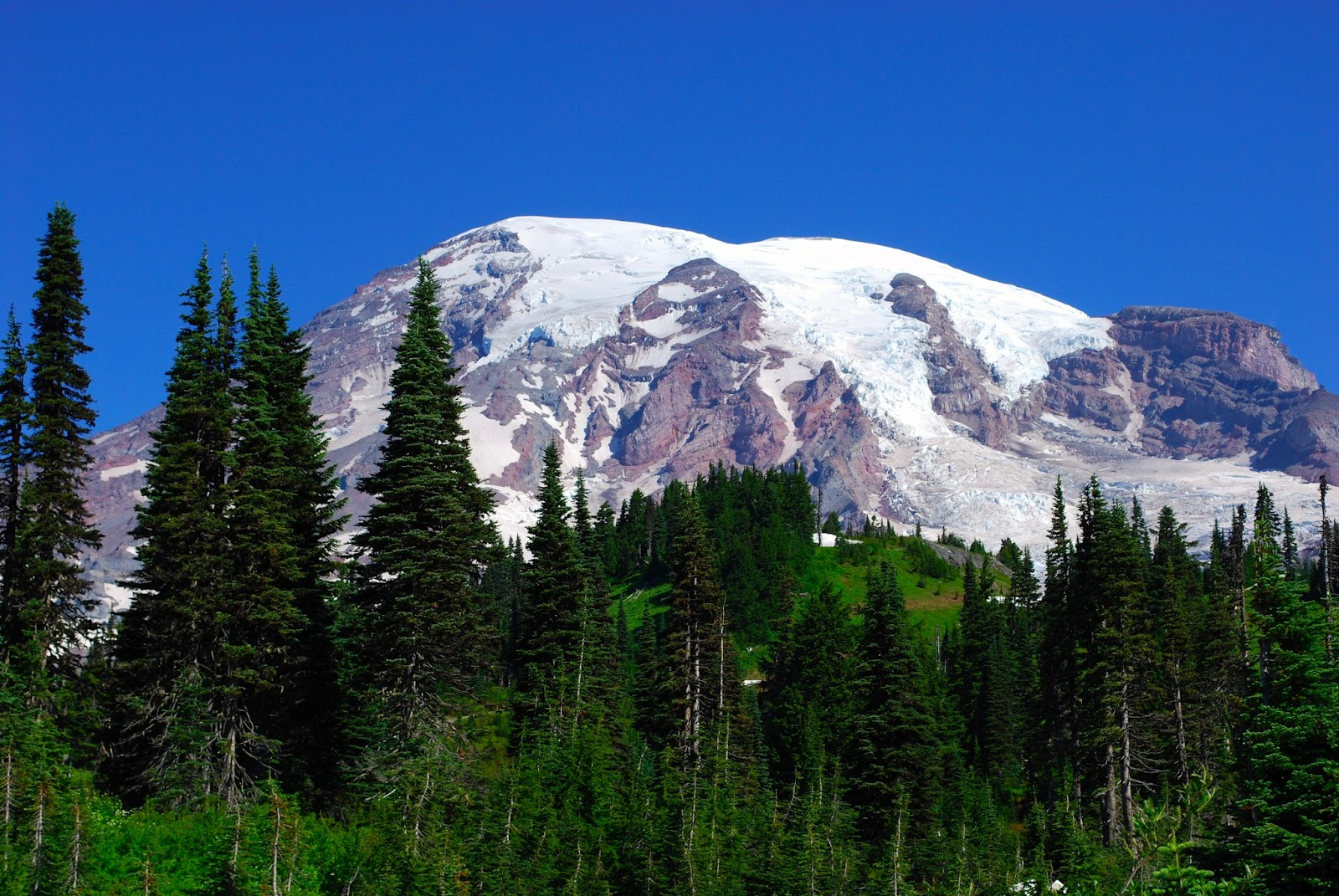 mount rainier national park Day hiking: mount rainier national park trails  day hiking mount rainier provides the most thorough coverage of mount rainier national park to date, including the .