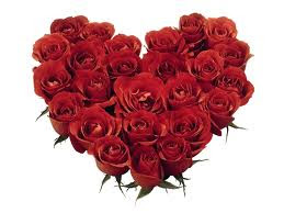 RED ROSES FROM SECUBIT GARAM NOR67