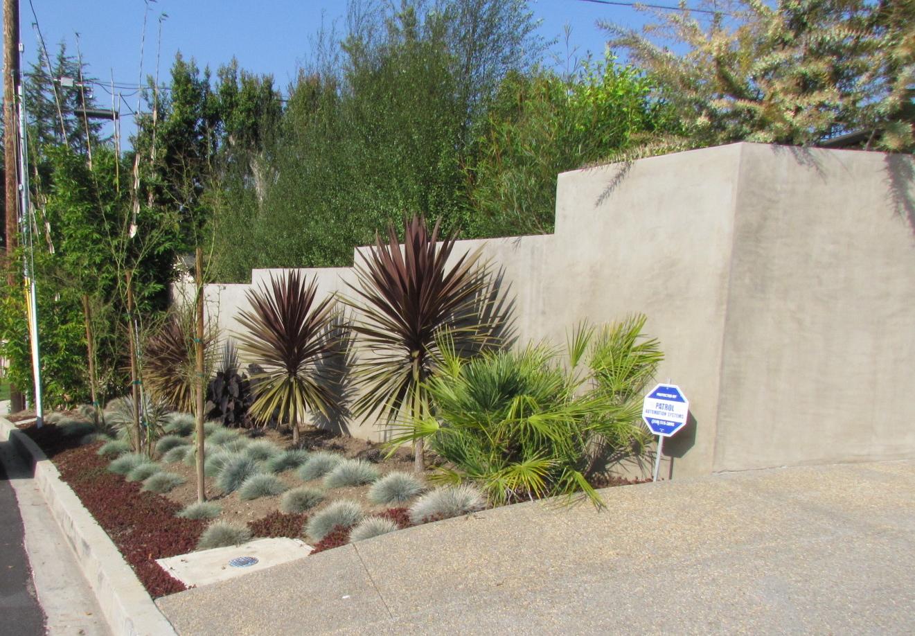 Mar Vista Green Garden Showcase March 2012