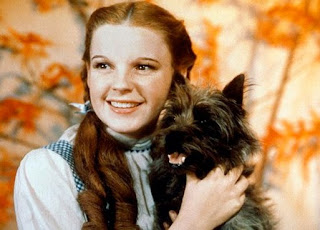 dorothy and toto picture
