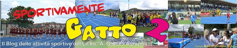 Sportivamente Gatto 2