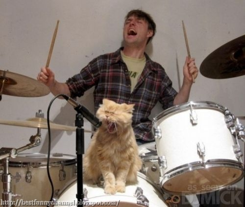 Funny man and cat.