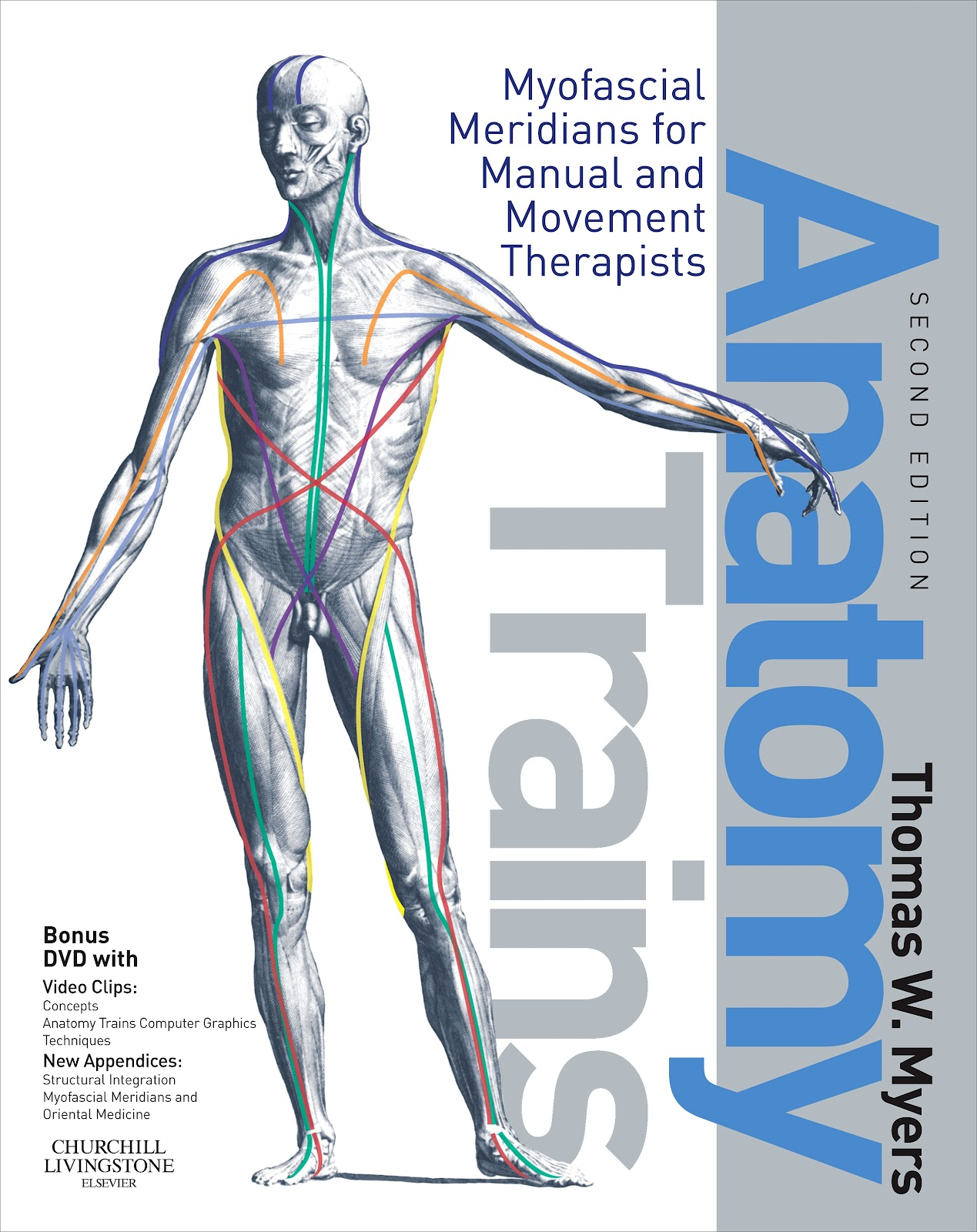 2012 Art Of Motion Training In Movement Publication Anatomy Trains