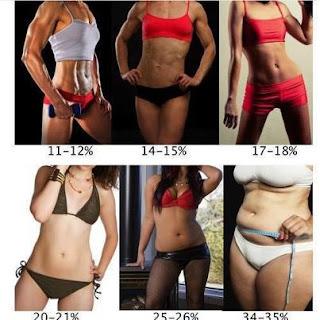 Poziom tłuszczu - porównanie