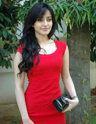 Neha Sharma sexy picture