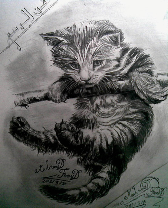 رسومات حيوانات الرصاص والفحم