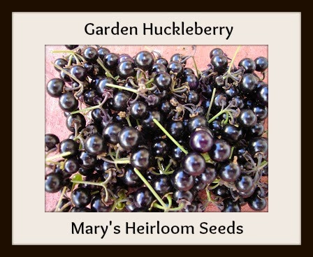 http://marysheirloomseeds.com/specialty-heirlooms.html