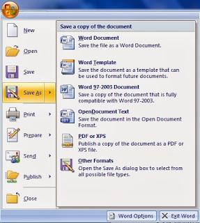 Cara Mengubah  File Word Ke Pdf, Ms.word
