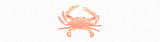 Crab Logo Designs