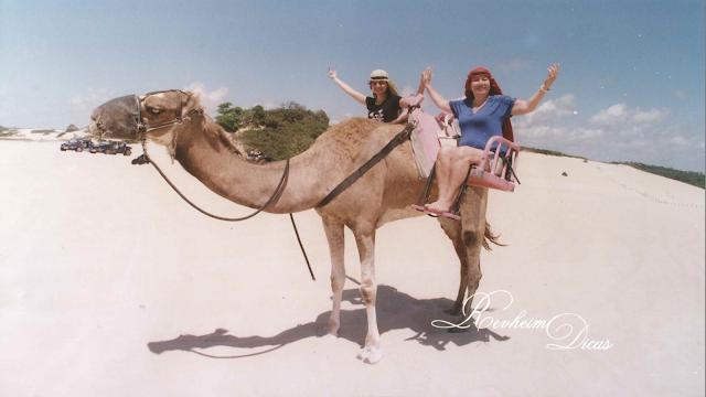 Natal, Rio Grande do Norte, CVC, Pontos turísticos, pontos turísticos em natal, Viagem, viagem dos sonhos, dromedário, praia Genipabu, férias inesquecíveis, Revheim Dicas