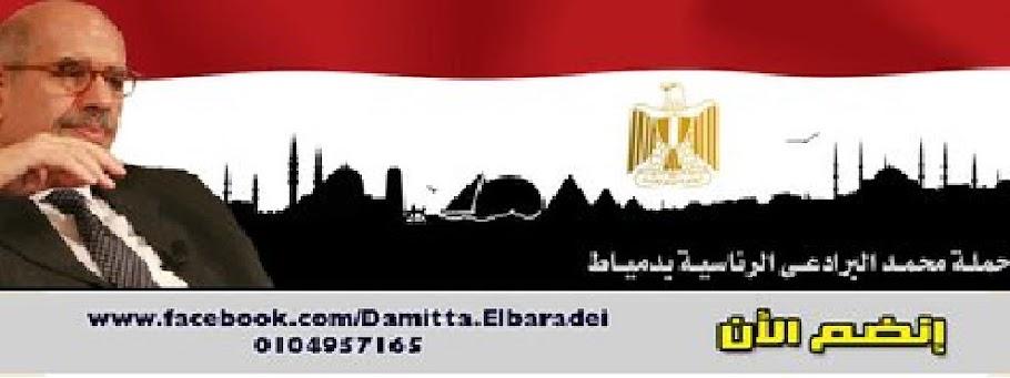 حملة محمد البرادعي الرئاسية بدمياط