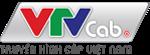 VTVnet Blog