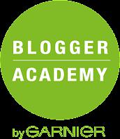 Blogger Academy