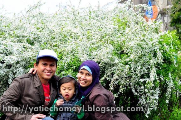 http://3.bp.blogspot.com/-Zyvp-HpcfbY/TZvYkmzPy5I/AAAAAAAAKmg/rdU0yhICpOM/s1600/bushes.jpg