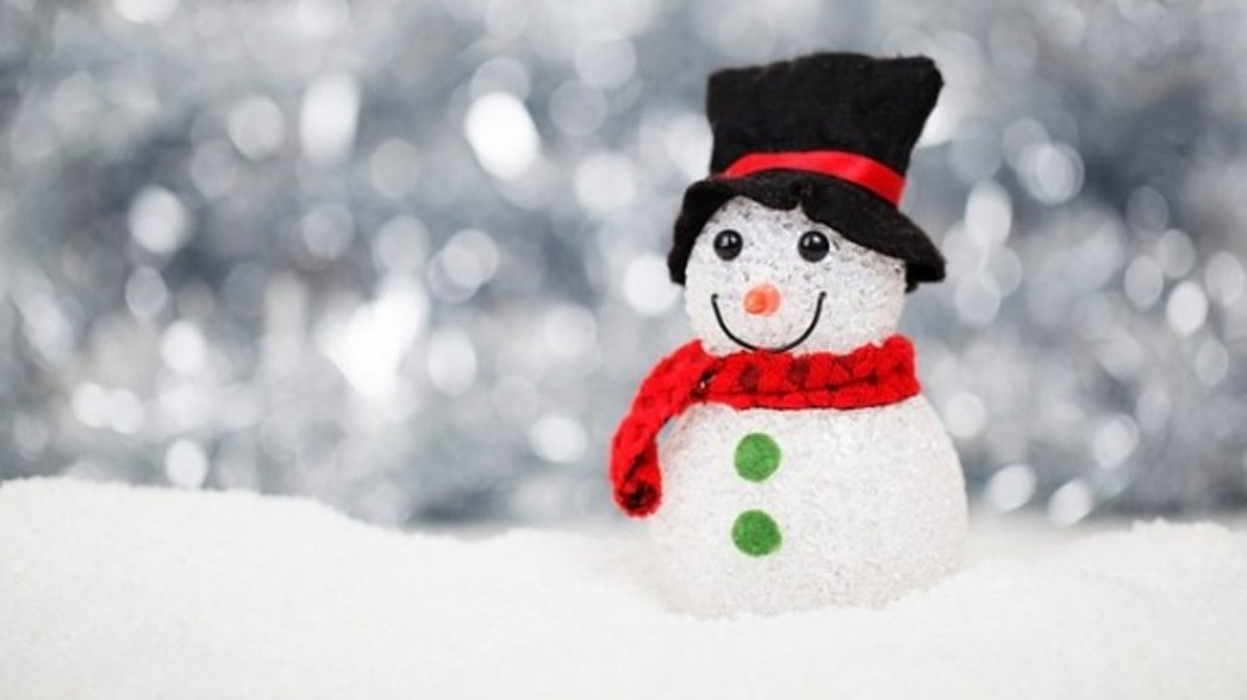 Sneško domaćica