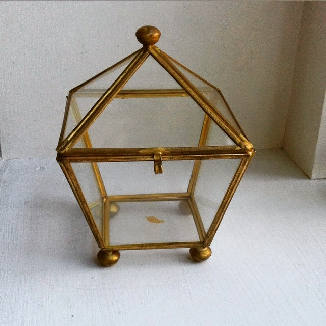 #thriftscorethursday Week 46 | Instagram user: hollygruszka shows off this Brass Terrarium