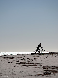 beach bike silhouette