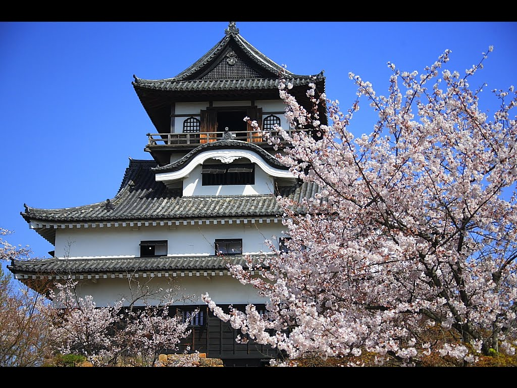 japanese castles Find great deals on ebay for japanese castle model in dioramas models and kits shop with confidence.
