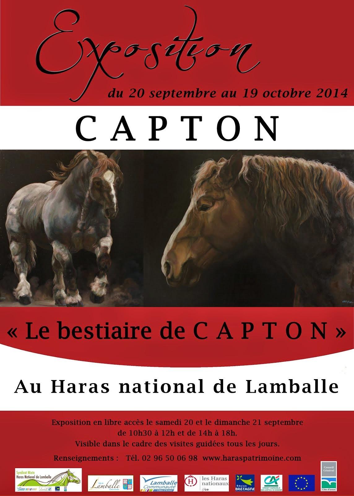 HARAS NATIONAL DE LAMBALLE : EXPOSITION PERSONNELLE