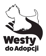 Westy do Adopcji