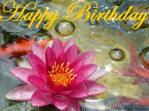 [Image: Happy+Birthday+Lotus+Photo.jpg]