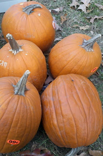 can you feed pumpkins to pigs, can you feed pumpkins to chickens, natural pig wormer, pig dewormer, uses for pumpkins,
