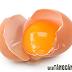 Tăng cân nhanh với trứng gà và mật ong