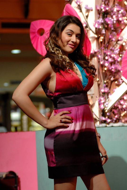 Hansika motwani bedazzles us in this tri colored short dress which she pulls off effortlessly.  - Hansika Motwani gorgeous pics in multicolored short dress