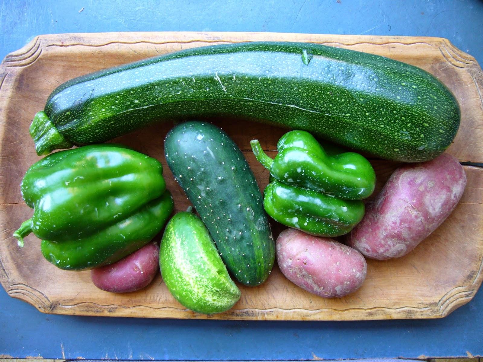 Jardin potager comestible partager avec les moineaux cette ann e le mildiou a d laiss mon - Pomme de terre germee comestible ...