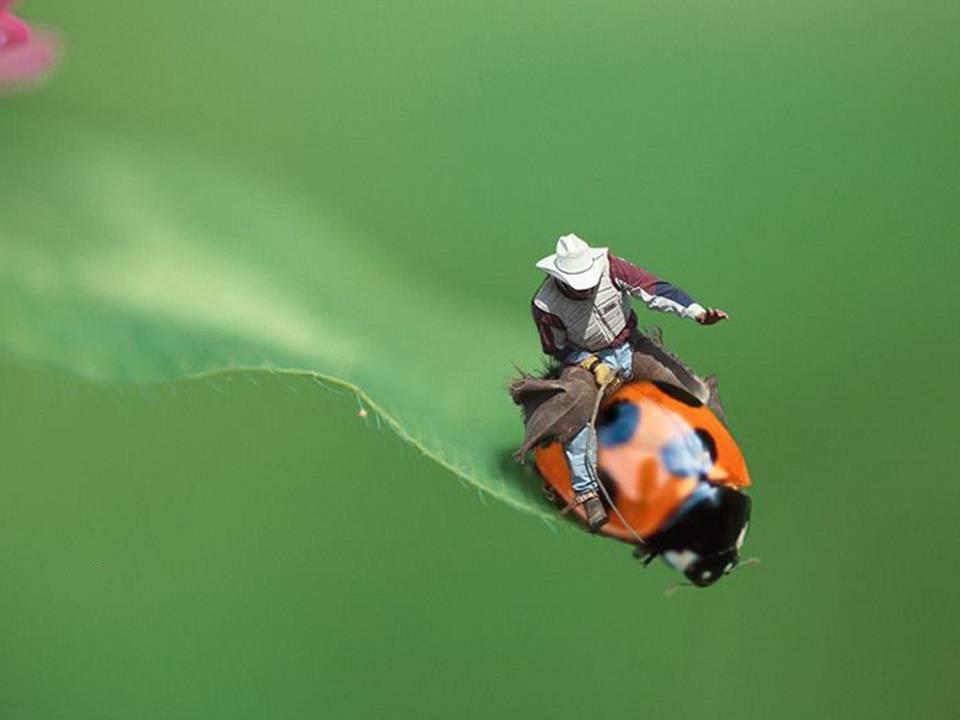 Más de 120+ Imagenes graciosas y fotos divertidas! Taringa! - imagenes chistosas de pesca