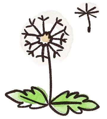 わたぼうしのイラスト(花)