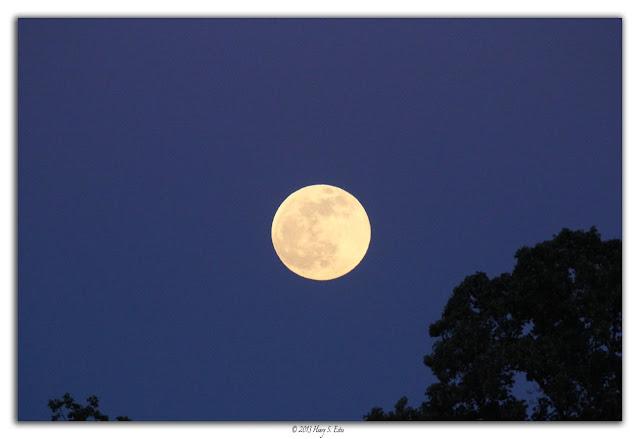 Full Luna