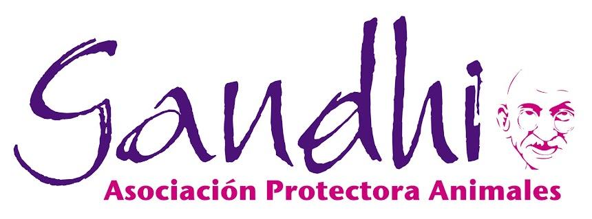 ASOCIACIÓN PROTECTORA DE ANIMALES GANDHI