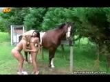 2 Mulheres Chupando um Cavalo