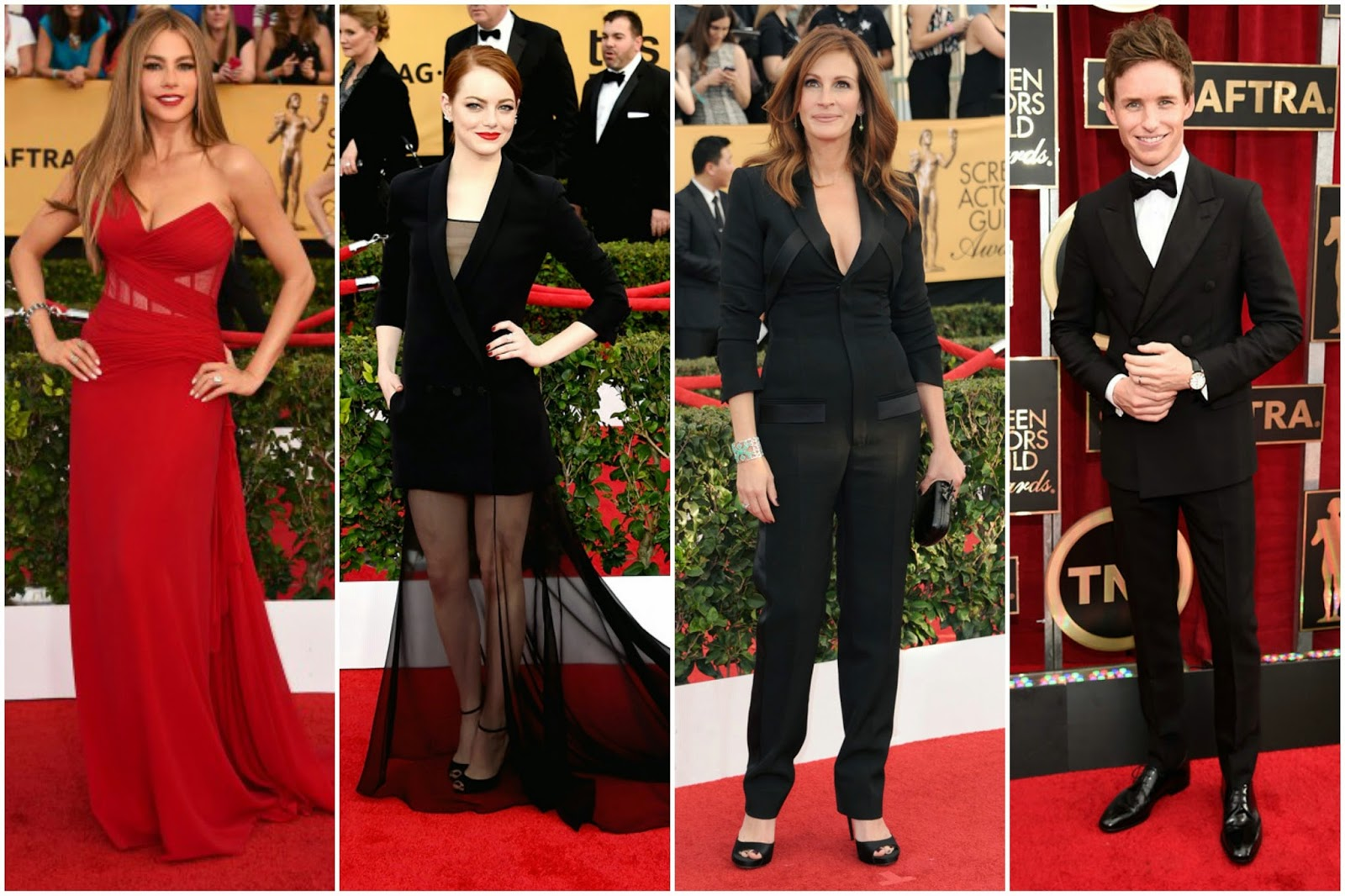 Best Dressed SAG Awards 2015 red carpet sofia vergara emma stone julia roberts eddie redmayne